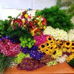 Florysta - zdjęcie 12